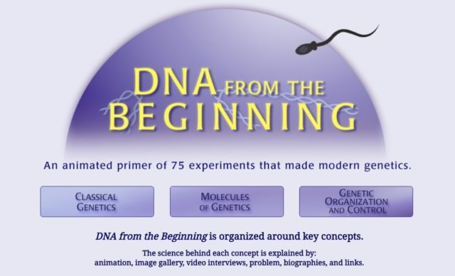 4 DNA form the Beginning